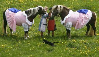 Horse dirndls